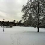#nevearoma Villa Borghese 7 - ©AlessandraColucci