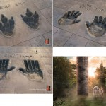 PPC Cement - campagna pubblicitaria