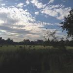 Oxford - Christ Church Meadow