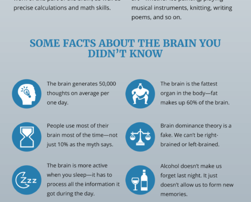 Left and Right Brain—The Surprising Truth [INFOGRAPHIC] by Jack Milgram