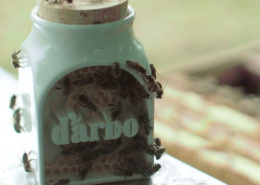 d'arbo - packaging