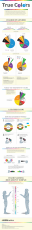 True Colors [gender preference] - infographic