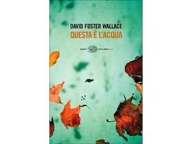"""""""Questa è l'acqua"""" David Foster Wallace"""