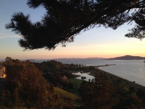 San Francisco - green panorama 5© Alessandra Colucci