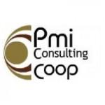 PMI Consulting - logo