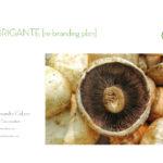 Il Brigante - branding plan
