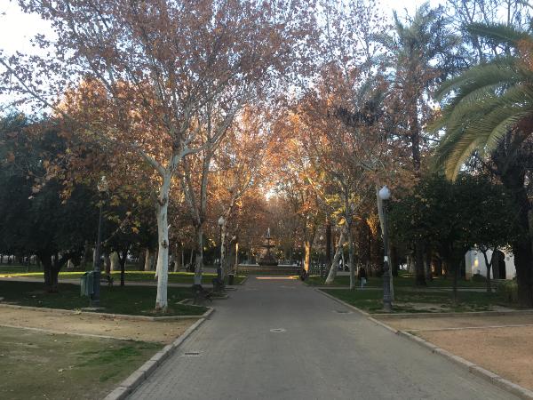 Cordoba - giardini