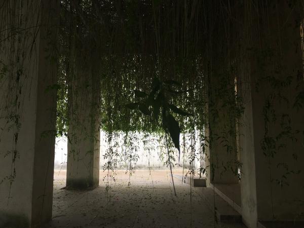 Siviglia - Centro Andaluso Arte Contemporanea