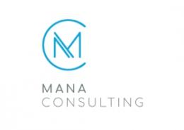 Mana Consulting - management consultancy
