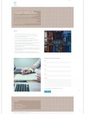 Mana Consulting - website